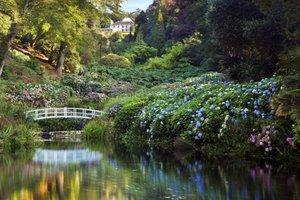 Trebah Garden for hire