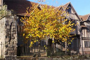 Lord Leycester Hospital for hire
