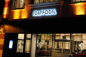 The Daffodil for hire
